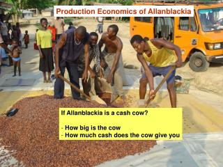 Production Economics of Allanblackia