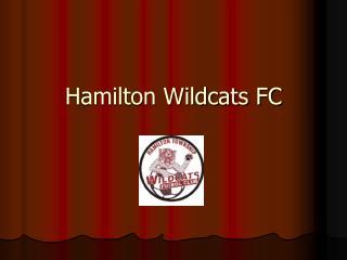 Hamilton Wildcats FC