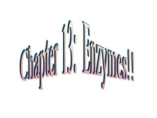 Chapter 13:  Enzymes!!