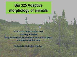 Bio 325 Adaptive morphology of animals