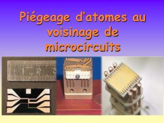 Piégeage d'atomes au voisinage de microcircuits