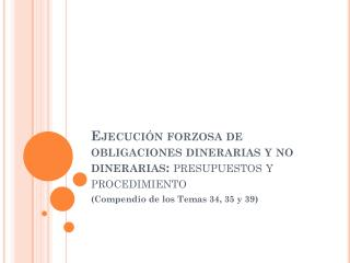 Ejecuci�n forzosa de obligaciones dinerarias y no dinerarias:  presupuestos y procedimiento