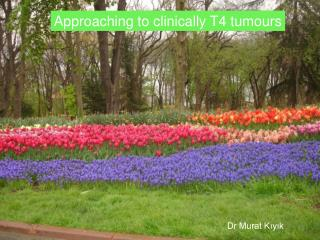 Approaching to clinically T4 tumours