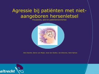 Agressie bij pati nten met niet-aangeboren hersenletsel Prevalentie, aard en pati ntenkenmerken        Ada Visscher, Ber