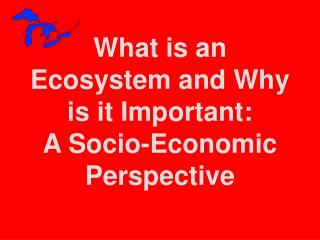 What is an  Ecosystem and Why is it Important: A Socio-Economic  Perspective