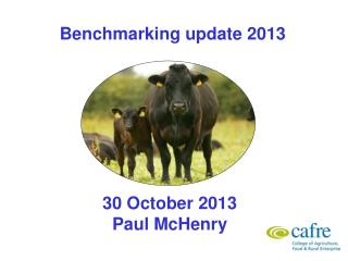 Benchmarking update 2013