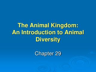 The Animal Kingdom: An Introduction to Animal Diversity