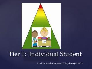 Tier 1:  Individual Student