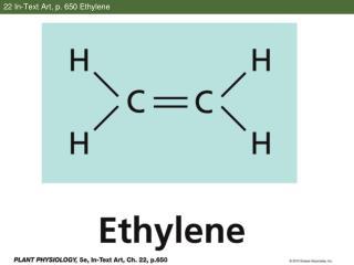 22 In-Text Art, p. 650 Ethylene