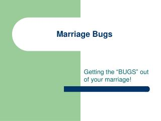 Marriage Bugs