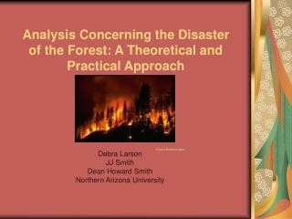 Analysis Concerning the Disaster of the Forest: A Theoretical and Practical Approach