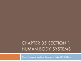 Chapter 35 Section 1 Human Body Systems