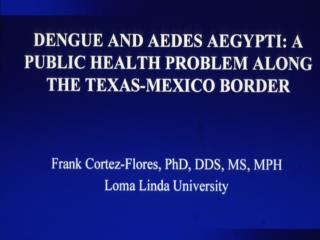 Dengue in the Americas 1980–1998