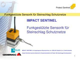 IMPACT SENTINEL Funkgestützte Sensorik für Steinschlag Schutznetze