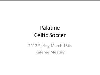 Palatine  Celtic Soccer