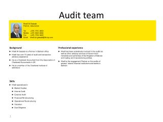 Audit team