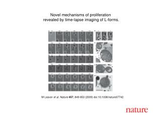 M Leaver  et al. Nature 457 , 849-853 (2009) doi:10.1038/nature07742