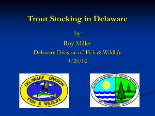 Trout Stocking in Delaware