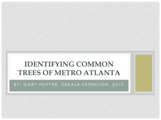 IDENTIFYING Common Trees of METRO ATLANTA