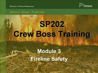 SP202 Crew Boss Training