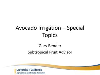Avocado Irrigation – Special Topics
