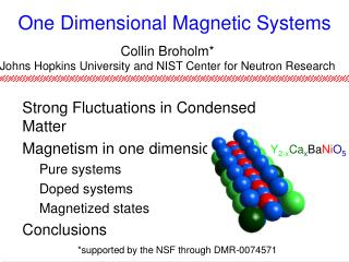 One Dimensional Magnetic Systems