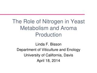 The Role of Nitrogen in Yeast Metabolism and Aroma Production