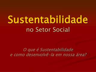 Sustentabilidade  no Setor Social   O que   Sustentabilidade  e como desenvolv -la em nossa  rea