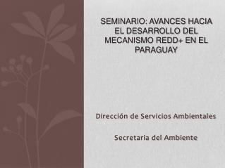 Seminario: Avances hacia el Desarrollo del Mecanismo REDD+ en el Paraguay