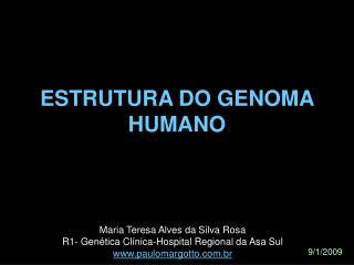 ESTRUTURA DO GENOMA HUMANO