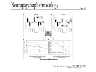 Neuropsychopharmacology  (2014)  39 , 595-604; doi:10.1038/npp.2013.232
