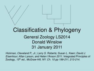 Classification  Phylogeny