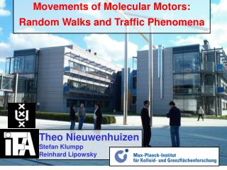 Movements of Molecular Motors: Random Walks and Traffic Phenomena