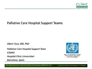 Palliative Care Hospital Support Teams