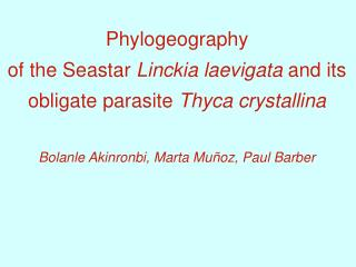 Phylogeography of the Seastar  Linckia laevigata  and its obligate parasite  Thyca crystallina