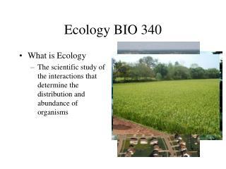 Ecology BIO 340