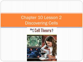 Chapter  10 Lesson 2 Discovering  Cells