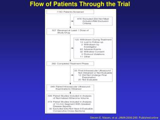 Flow of Patients Through the Trial