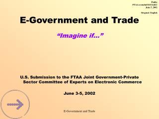 E-Government and Trade �Imagine if��