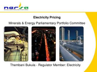 Electricity Pricing Minerals & Energy Parliamentary Portfolio Committee
