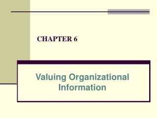 Valuing Organizational Information