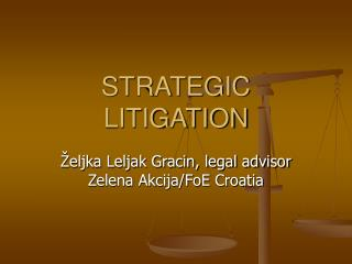 STRATEGIC LITIGATION