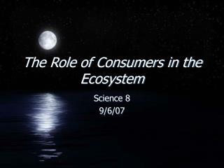 The Role of Consumers in the Ecosystem