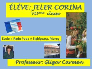 ÉLÈVE: JELER CORINA VII ème   classe