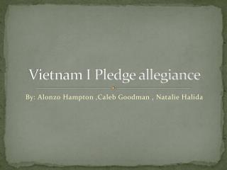 Vietnam I Pledge allegiance