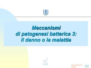 Meccanismi  di patogenesi batterica 3: Il danno o la malattia