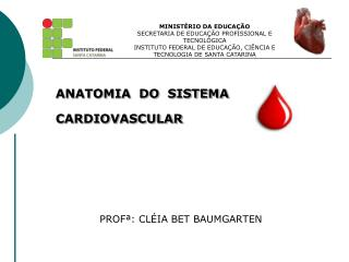 ANATOMIA  DO  SISTEMA  CARDIOVASCULAR              PROFª: CLÉIA BET BAUMGARTEN