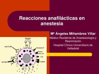 Reacciones anafil cticas en anestesia