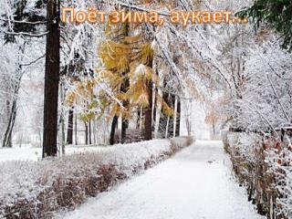 Поёт зима, аукает...