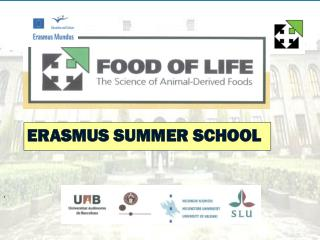 ERASMUS SUMMER SCHOOL